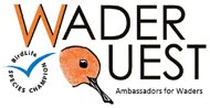 Sponsor Wader Quest for £5 a year
