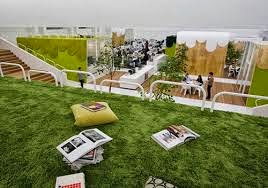 thư giãn cùng cỏ nhân tạo