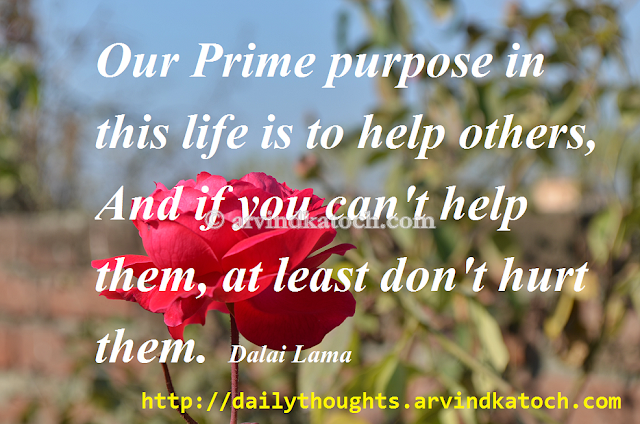 Prime, Purpose, Life, Dalai Lama, Hurt, Thought, Quote, Picture
