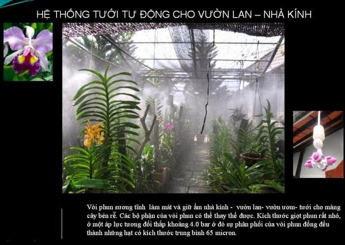 tuoi phun suong hoa lan
