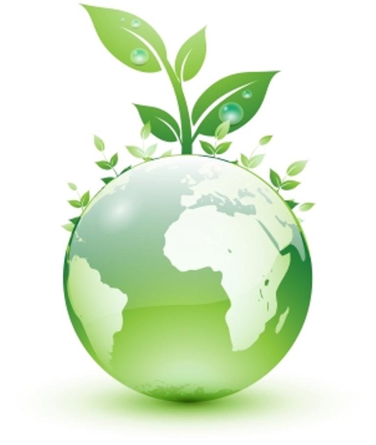La Educaci N Ambiental