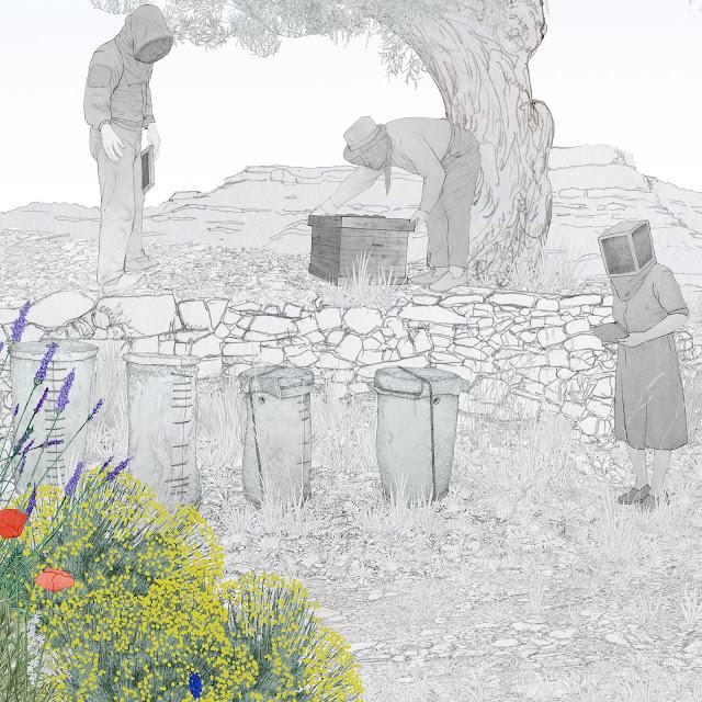 apicultores, miel, dibujo, museo etnologia Valencia