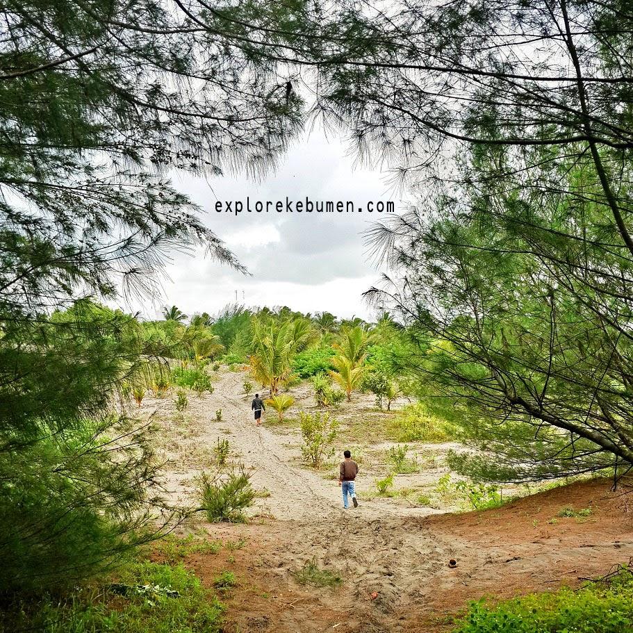 Pantai Pasir Putih Desa Tegalretno Kebumen