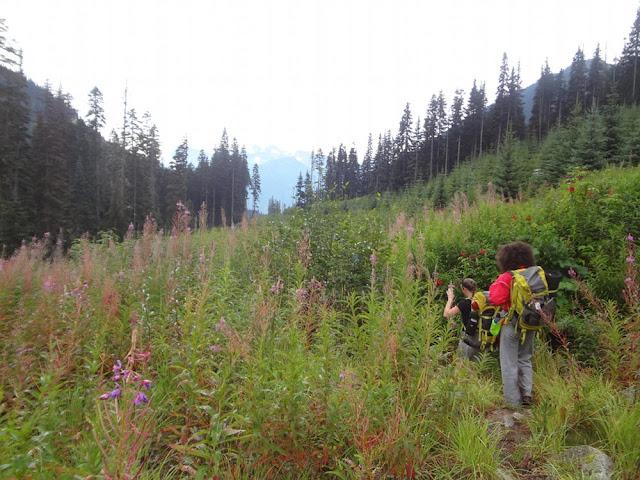 Hike to Long Lake, Tolkien Group, BC