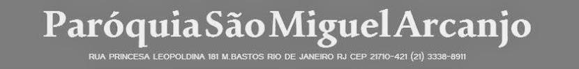 S Miguel Cinza