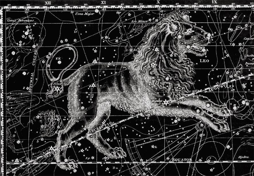 Horoscop iulie 2014 - Leu