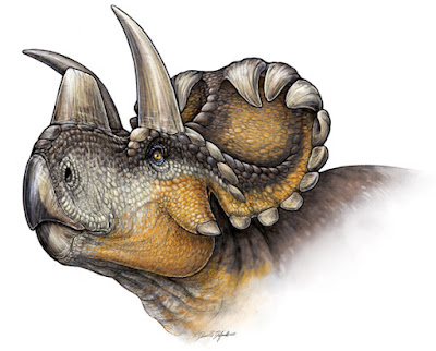 Single horned dinosaur