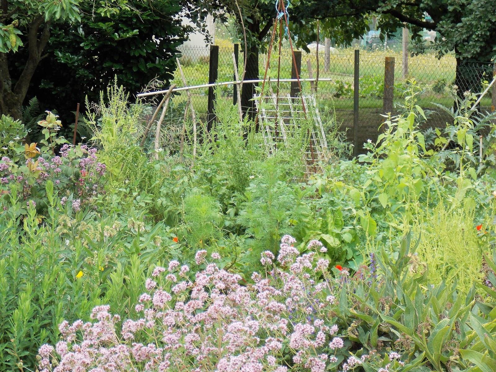 Ecolo bio nature permaculture urbaine et jardinage bio for Jardin bio 2015