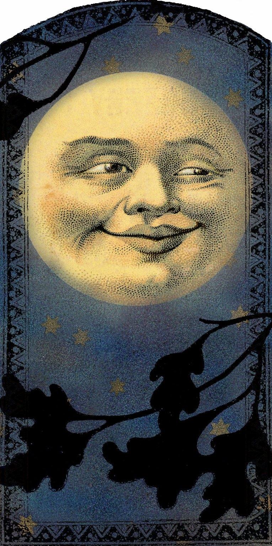 Vintage Moon Face Lilac & Lavender: ...