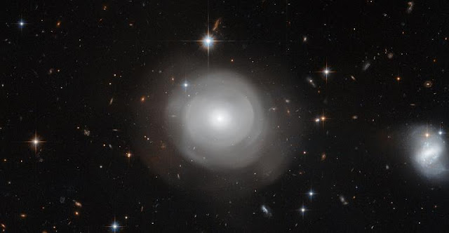 The ghostly shells of galaxy ESO 381-12 are captured here in a new image from the NASA/ESA Hubble Space Telescope, set against a backdrop of distant galaxies. The strikingly uneven structure and the clusters of stars that orbit around the galaxy suggest that ESO 381-12 may have been part of a dramatic collision sometime in its relatively recent past. Credit: NASA, ESA, P. Goudfrooij (STScI)