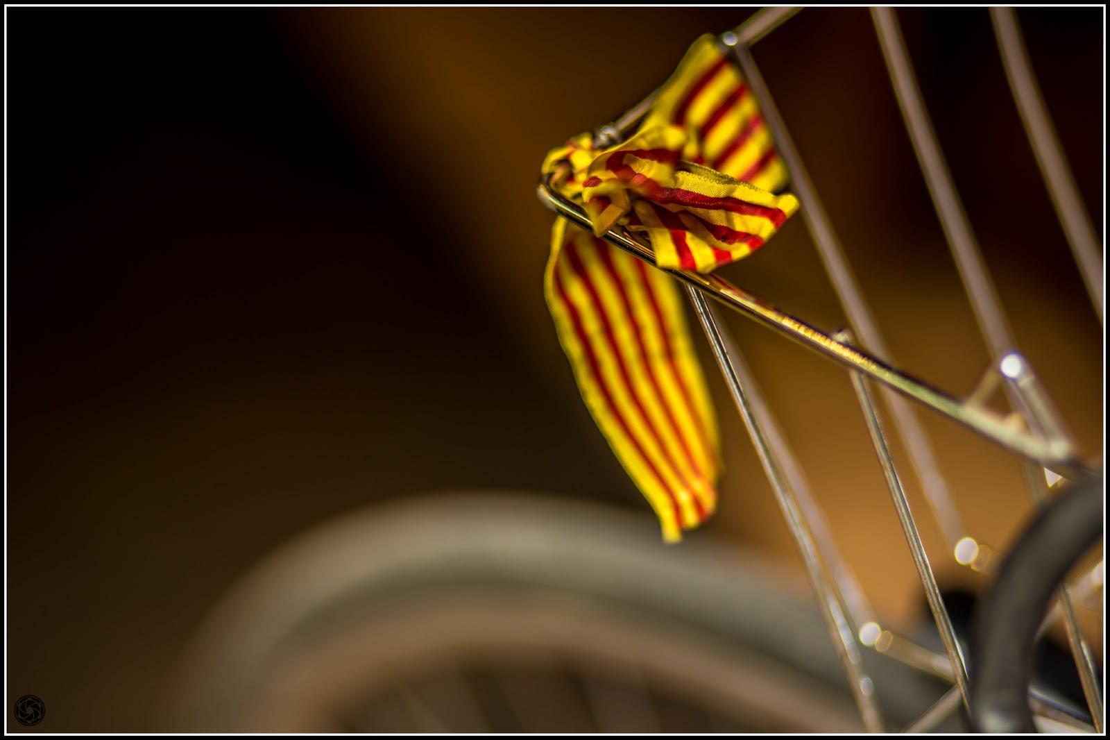 Bicicleta reivindicativa: Canon EOS 5D Mark III | ISO400 | Canon 85mm | f/1.8 | 1/320s