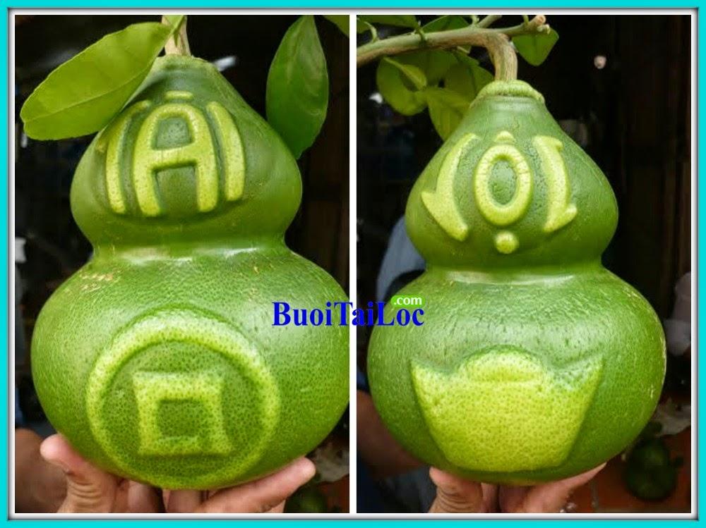 buoi-Ho-Lo-Tai-Loc-Thoi-Vang-Dong-Tien-kinh-doanh-tet-nguyen-dan