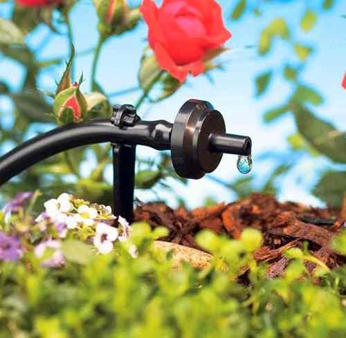 Permacultura del viento instalaci n de riego por goteo for Instalacion riego automatico jardin