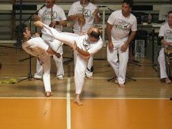 Sinistro Capoeira Brasil