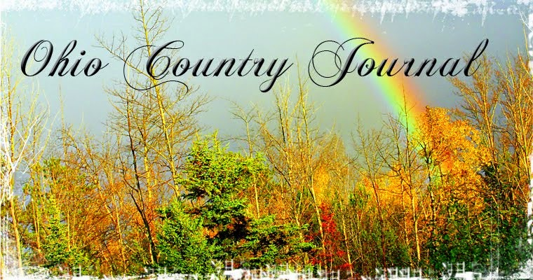 Ohio Country Journal