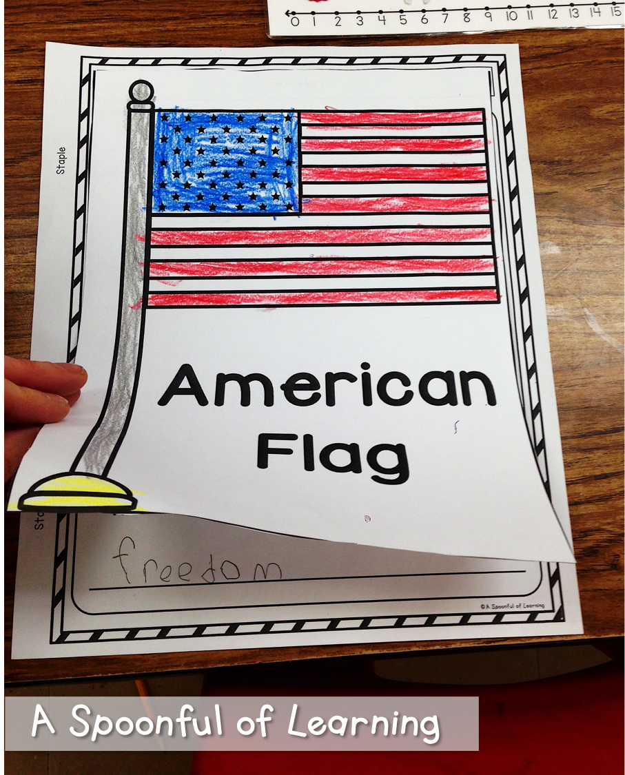 Flag burning essay