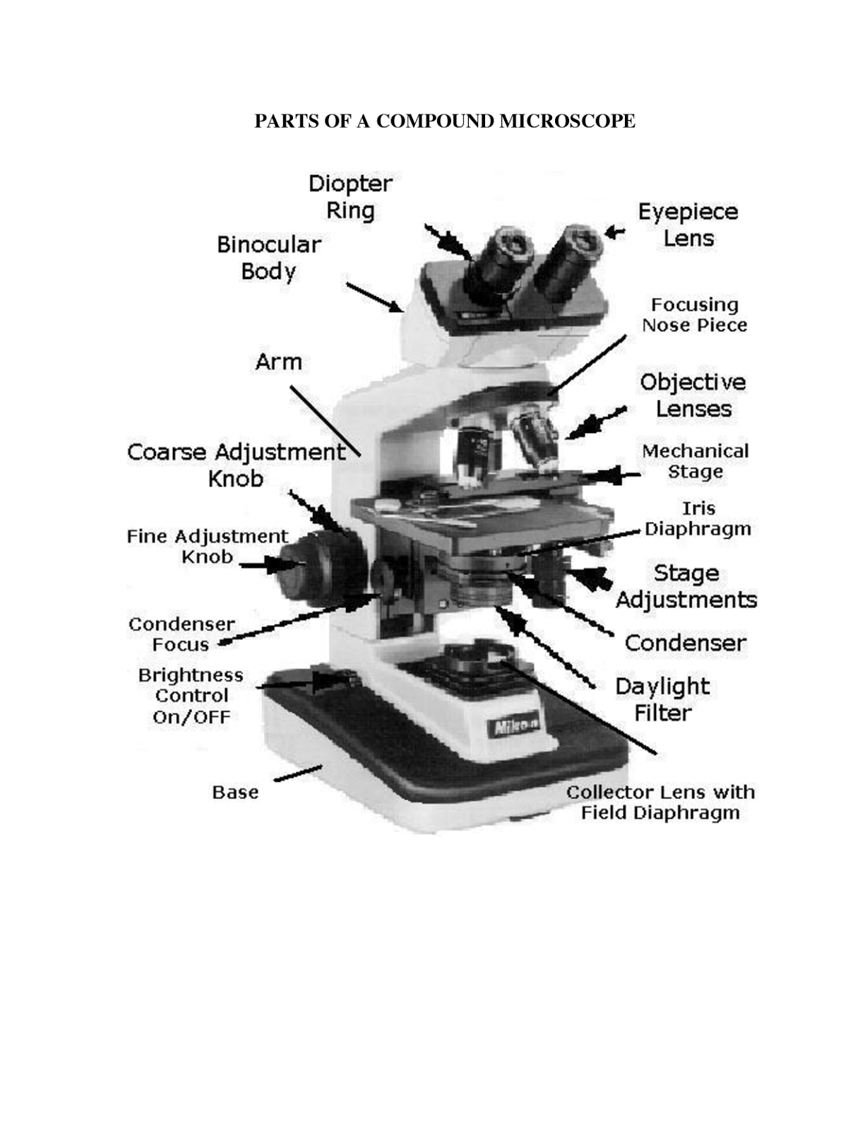 parts of a microscope
