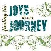 Finding the Joys in My Journey