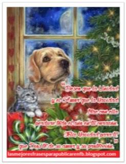 Frases De Navidad: Deseo Que La Unidad