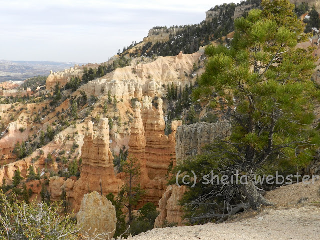 Hoodoos at rim of Fairyland Point