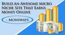 Micro Niche Blog, That Earns Money Online