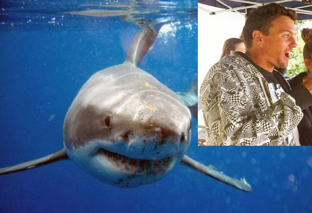 """Shark attack killed """"absolute champion"""" SURFER in ..."""