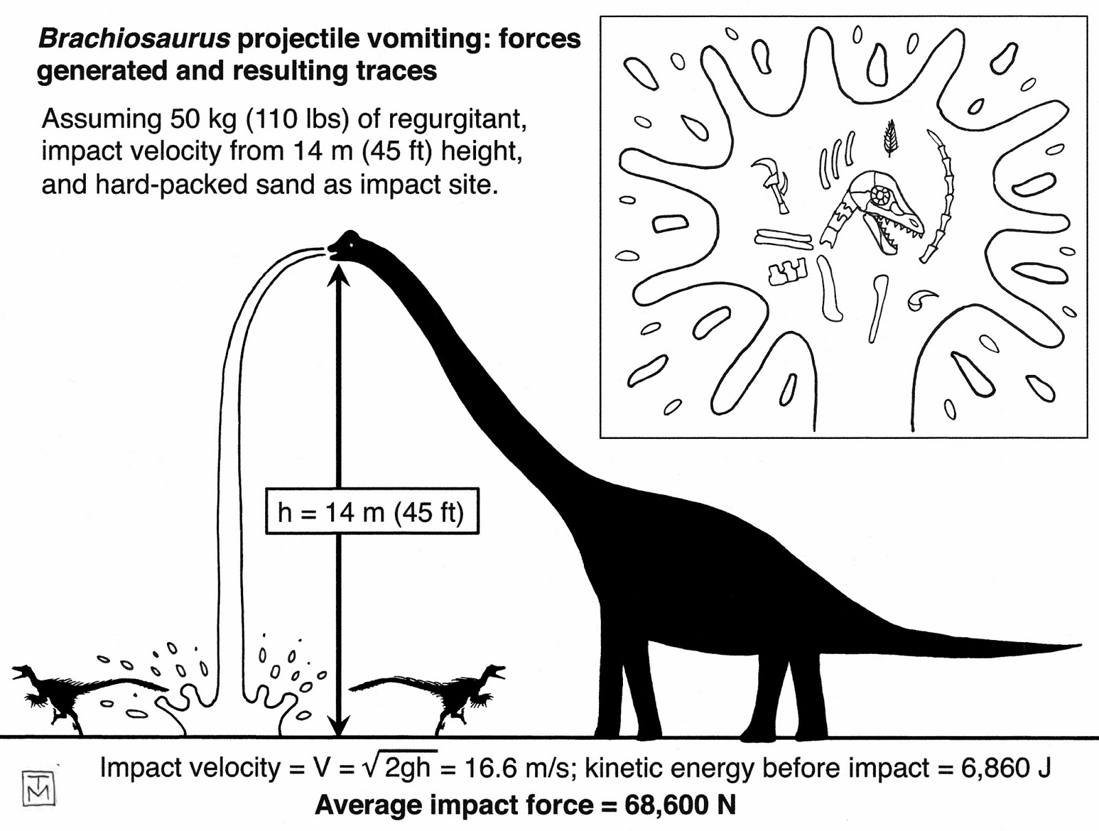 The coloring book of physics - Physics Quiz Question Brachiosaurus Vomit