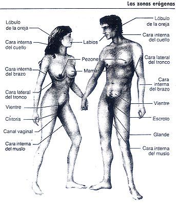 El esclavo sexual lame el cuerpo de la esposa