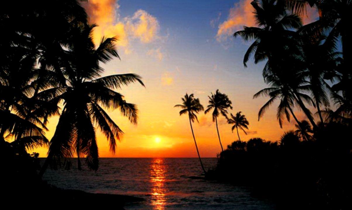 Sunrise  Baydreamer