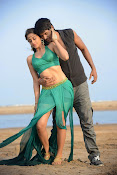 Ra Ra Krishnayya Movie Photos Gallery-thumbnail-14