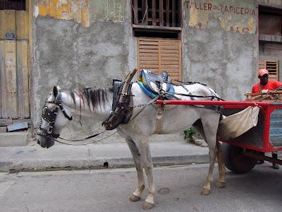 Santiago de Cuba horse and cart