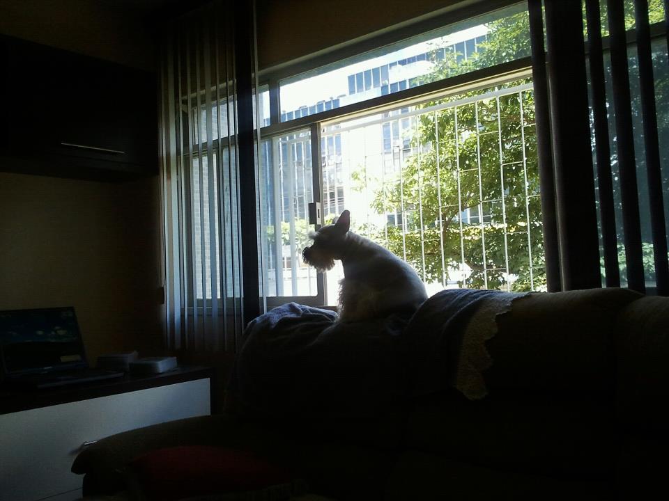 nina na janela