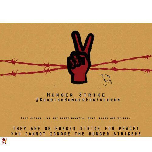 was the hunger strike campaign of Hunger strike and hunger strike to death it changed the whole nature of the campaign the fact that they were living in conditions like animals.