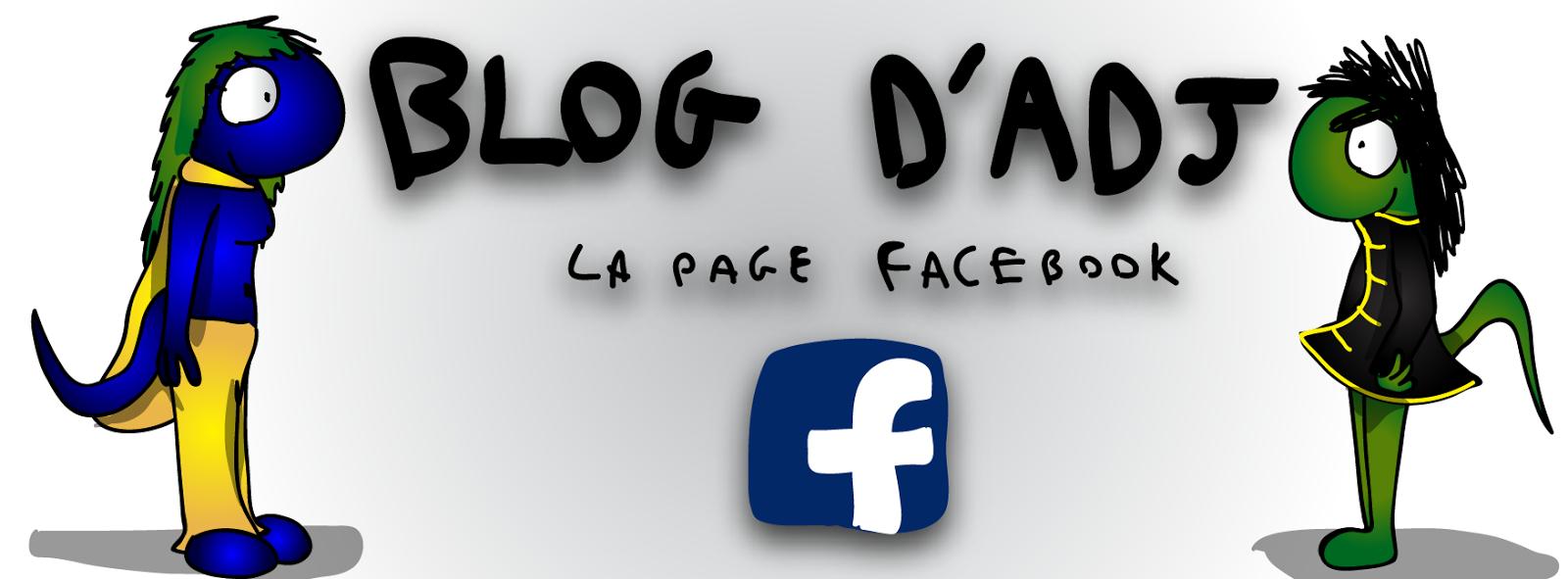 Suivez le blog sur Facebook