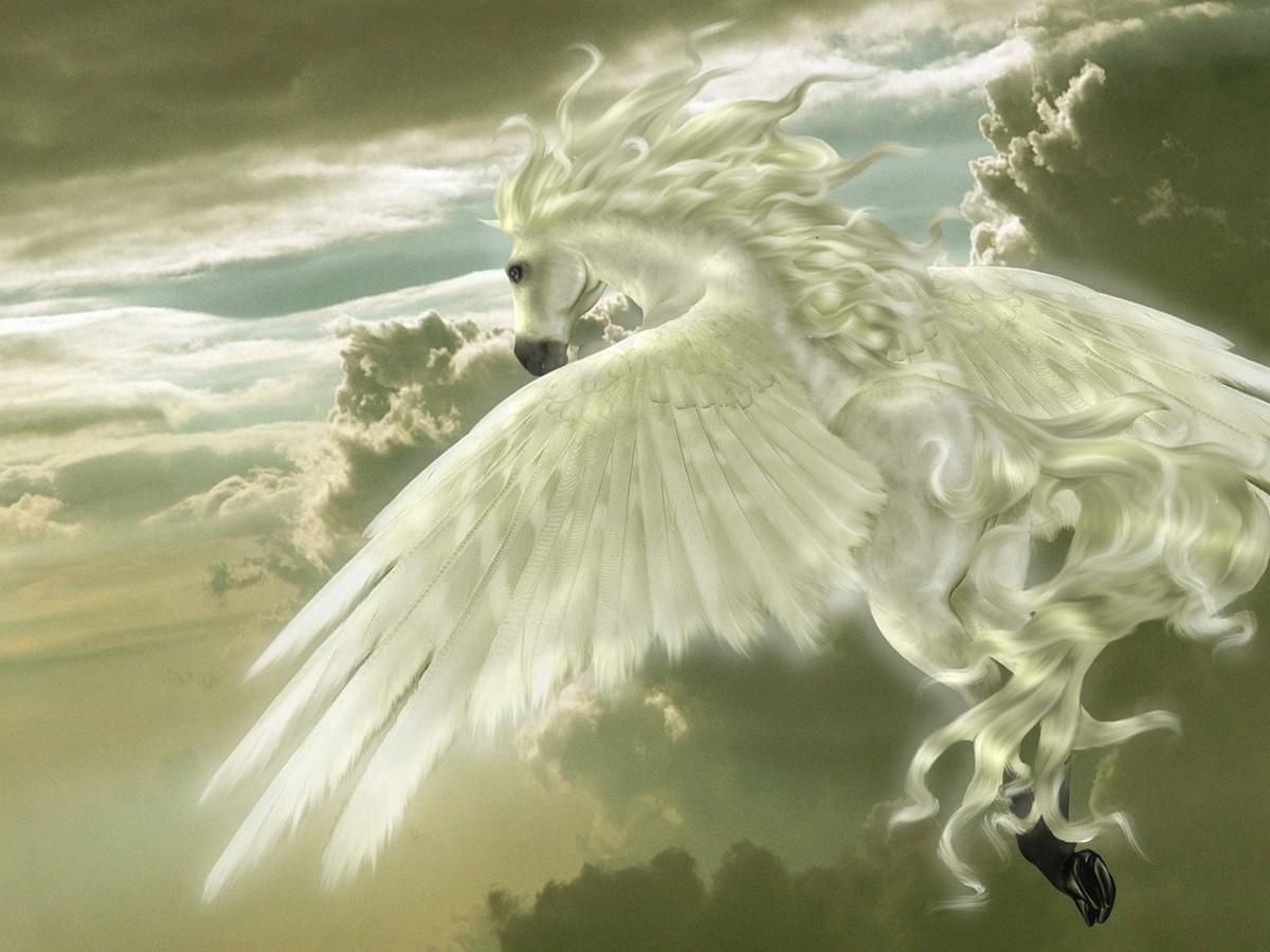 Pegasus il mitologico cavallo alato immagini e sfondi - Mitologia greca mitologia cavallo uomo ...