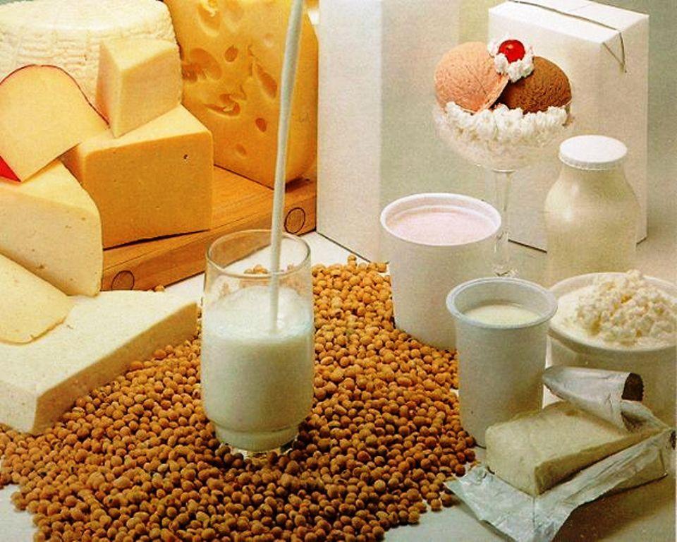 la leche y los derivados: