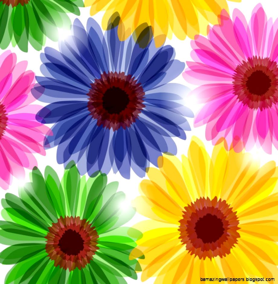 List Of Spring Flowers Amazing Wallpapers