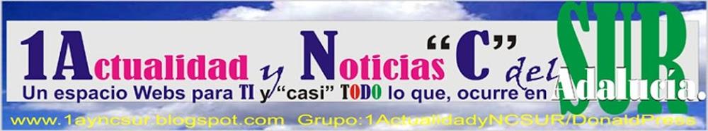 """1Actualidad y Noticias """"C"""" SUR"""