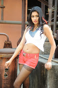 Akshida Hot Photos from Yuddam Movie Song shooting spot-thumbnail-1