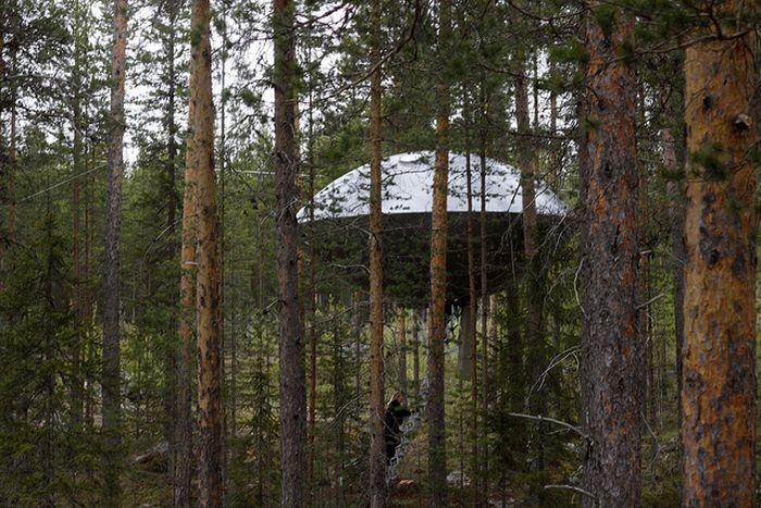 فندق الشجرة بالسويد-منتهى