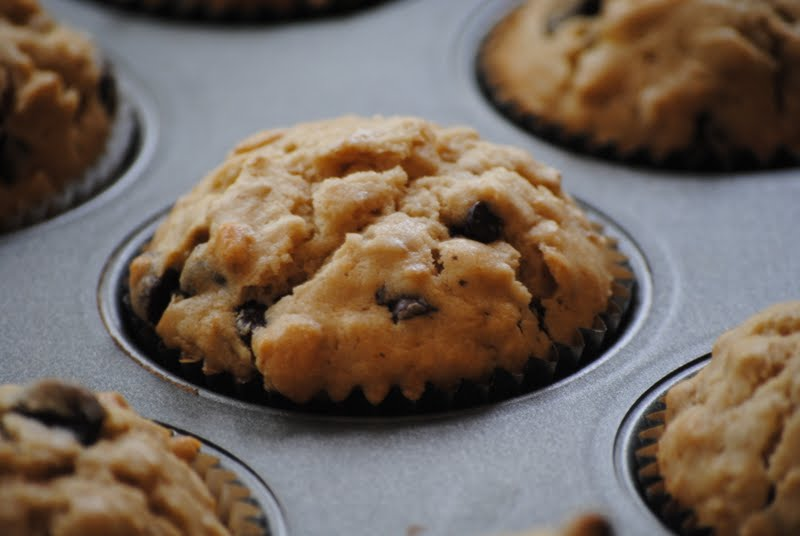 Calico and Cupcakes: Oatmeal Chocolate Chip Muffins