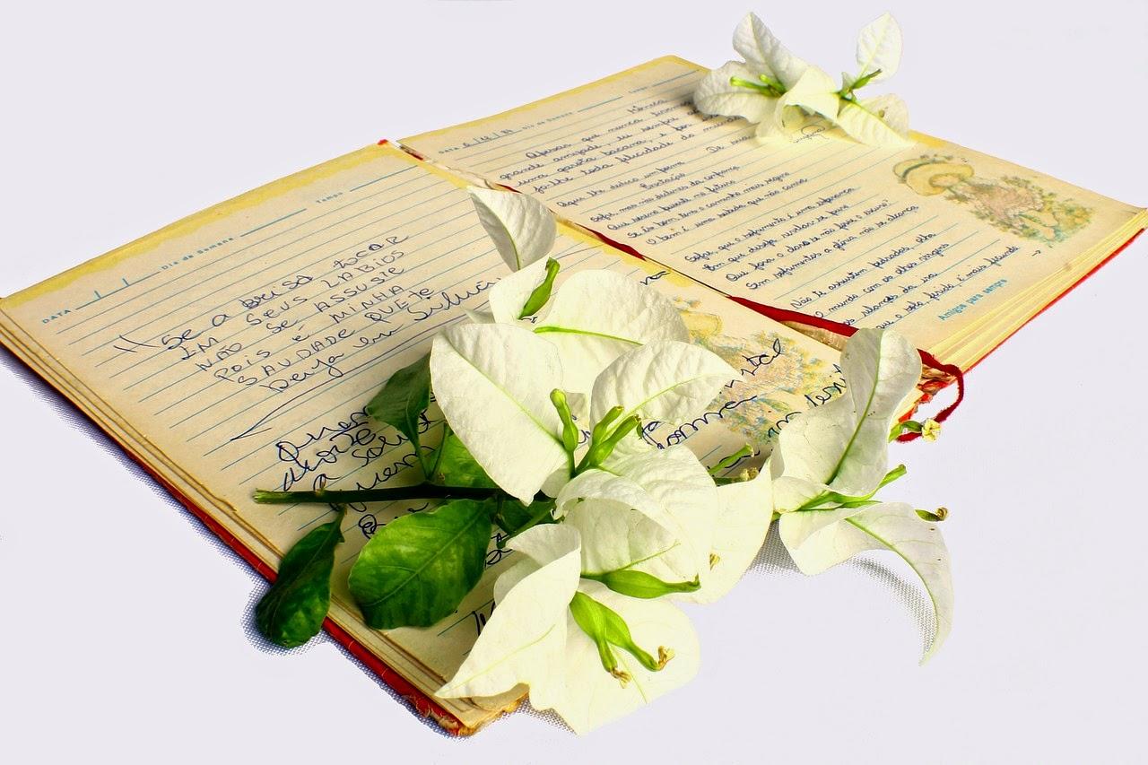 Puisi Cinta Untuk Merayu Pacar