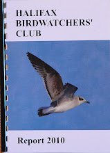 2010 HBWC report