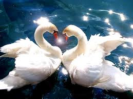 Kata Kata Cinta Paling Romantis (Lengkap) - Kata Romantis
