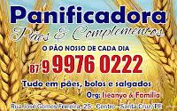 PÃES, BOLOS, LATICÍNIOS E  SALGADOS EM GERAL