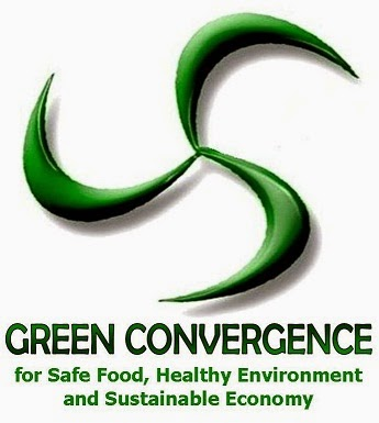 Green Convergence