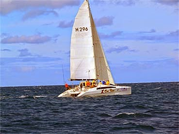 A fast cat on the Indian Ocean