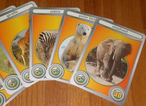 Interactive Wild Animal Adventures learning cards from Cypher Kids Club.