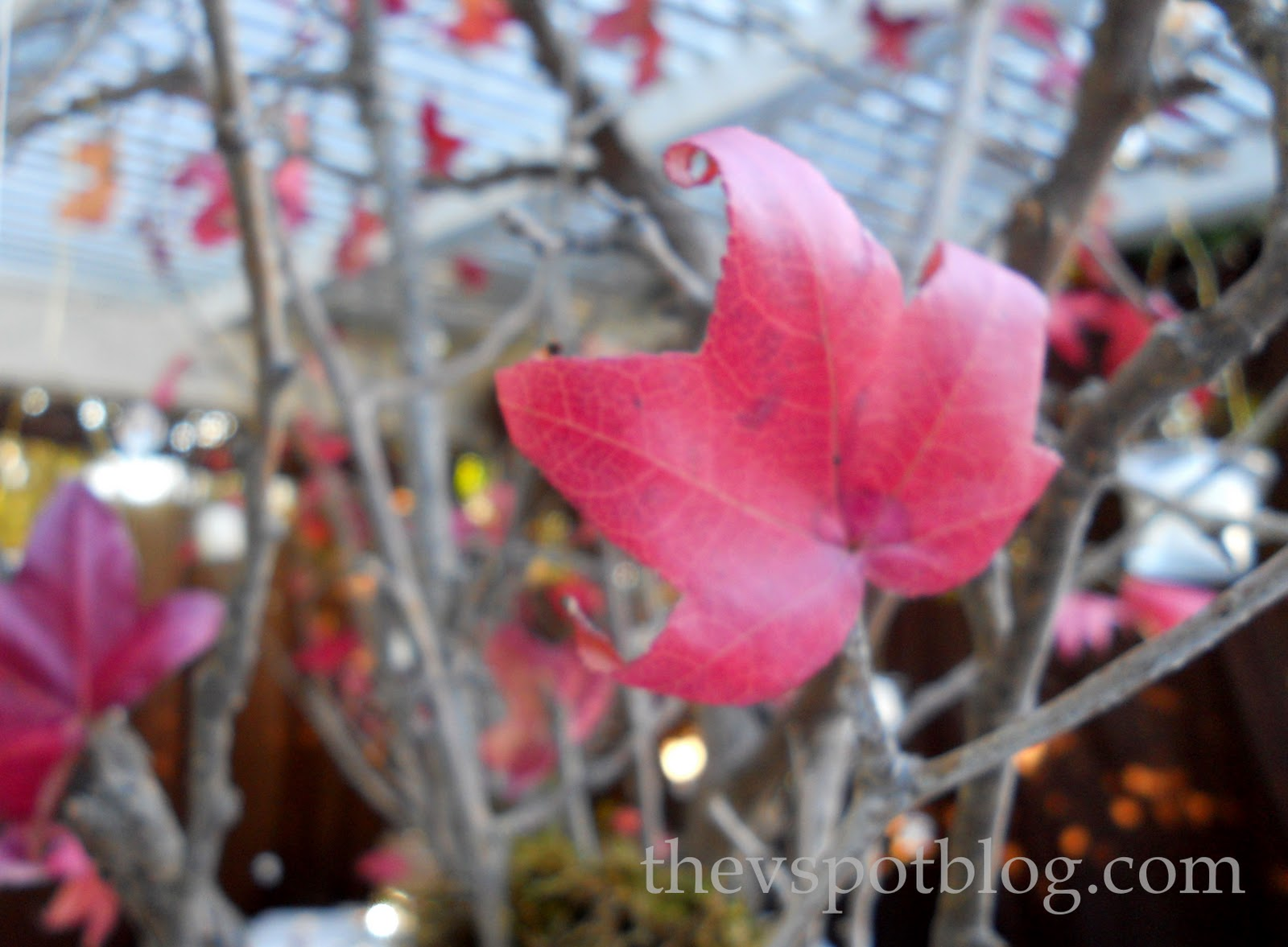 Twig and leaf fall centerpieces. | The V Spot