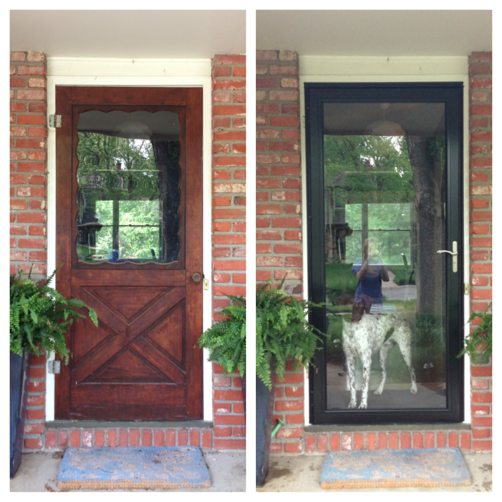 Cozy Contemporary The Black Plague Part I Storm Door
